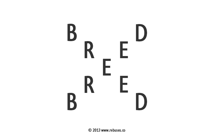Easy Rebus Puzzles With Answers What do you think todays rebus