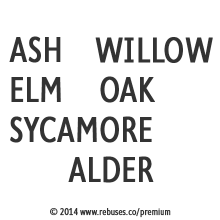 Ash-Willow-Elm-Oak-Sycamore-Alder